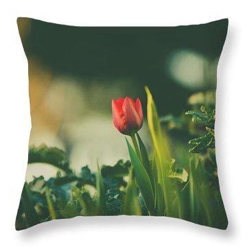 Start Of Spring Throw Pillow