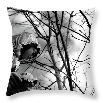 Throw Pillow featuring the photograph Statue by Edward Lee