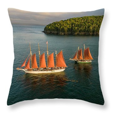 Throw Pillow featuring the photograph Stay The Course  by Michael Hughes