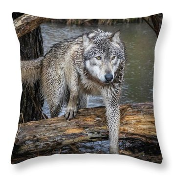 Stepping Over Throw Pillow