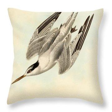 Sterna Elegans Throw Pillow