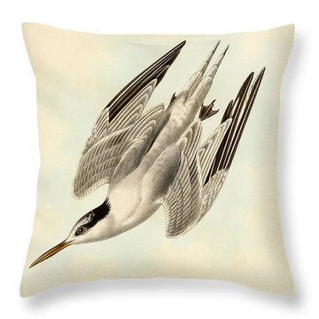 Sterna Elegans Throw Pillow