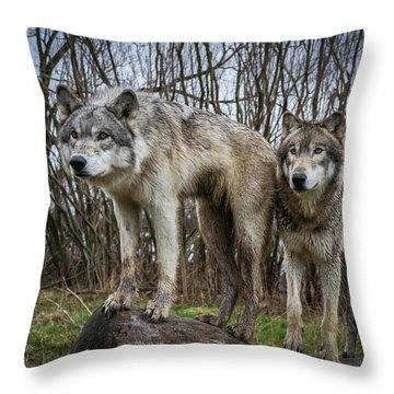 Still Watching Throw Pillow