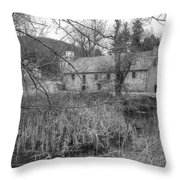 Stone And Reeds - Waterloo Village Throw Pillow