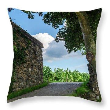 Stone House II Throw Pillow