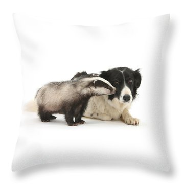 Throw Pillow featuring the photograph Stop Badgering Me by Warren Photographic