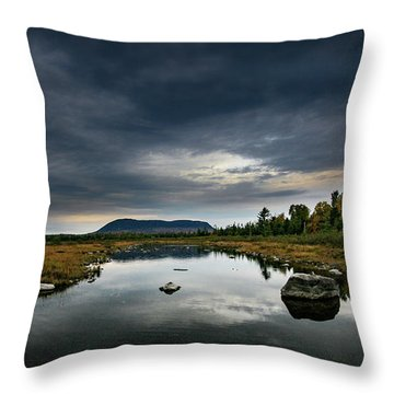 Stormy Day In Maine Throw Pillow
