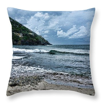 Stormy Shores Throw Pillow