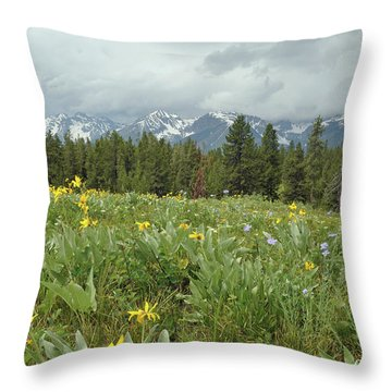 Stormy Tetons And Flowers Throw Pillow