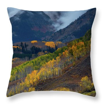Throw Pillow featuring the photograph Stormy Weather Over The Elks by John De Bord
