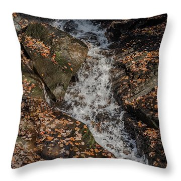 Throw Pillow featuring the photograph Stream Through Rocks by Scott Lyons
