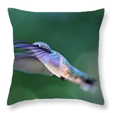 Throw Pillow featuring the photograph Stretch by Candice Trimble