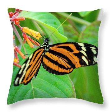 Striking In Orange And Black Throw Pillow