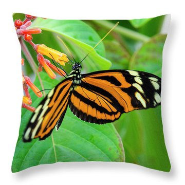 Striking In Orange And Black Throw Pillow