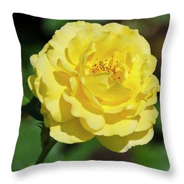 Striking In Yellow Throw Pillow