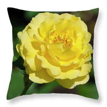 Striking In Yellow Throw Pillow