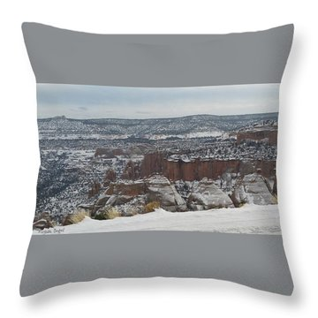 Striped Overview Throw Pillow