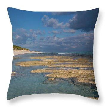 Stromatolites On Stocking Island Throw Pillow