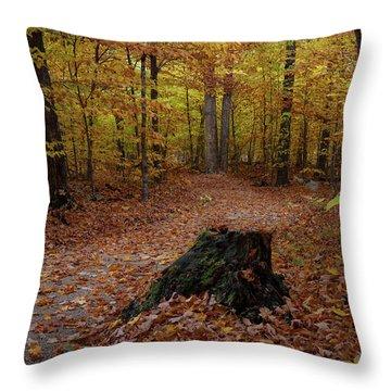 Stump Throw Pillow