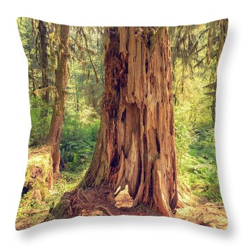 Stump In The Rainforest Throw Pillow