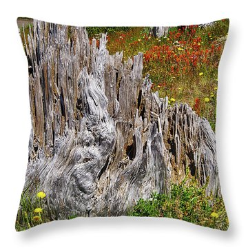 Stumps Of Trees Shattered In The 1980 Eruption Throw Pillow