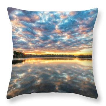 Stumpy Kinda Of Reflection Throw Pillow