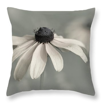 Throw Pillow featuring the photograph Subtle Glimpse by Dale Kincaid