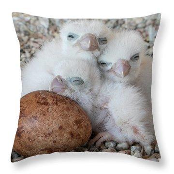 Success Story Throw Pillow