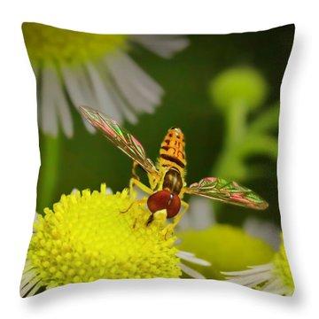Sugar Bee Wings Throw Pillow