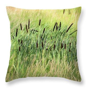 Summer Cattails In Field Of Grass - Throw Pillow