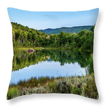 Throw Pillow featuring the photograph Summer Cove At Ivie Pond by TL Mair