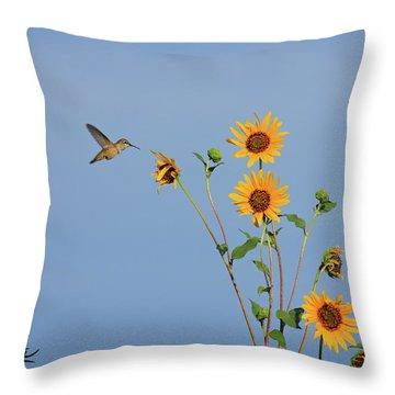 Summer Day Hummingbird Throw Pillow
