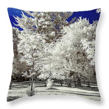 Summer Park In Infrared Throw Pillow