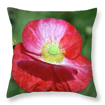 Summer Poppy Throw Pillow