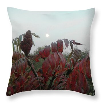 Throw Pillow featuring the photograph Summer's End by Rosanne Licciardi