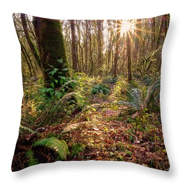 Throw Pillow featuring the photograph Sun Star In Tryon Creek State Park by Whitney Goodey