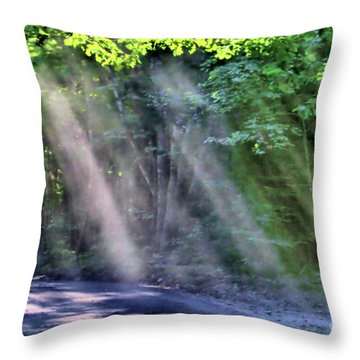 Throw Pillow featuring the photograph Sun Streaks by Debbie Stahre
