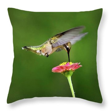 Throw Pillow featuring the mixed media Sun Sweet by Christina Rollo