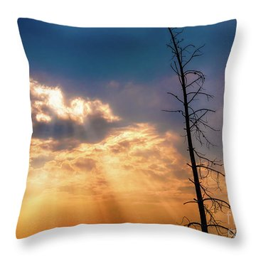 Throw Pillow featuring the photograph Sunbeams by Dheeraj Mutha