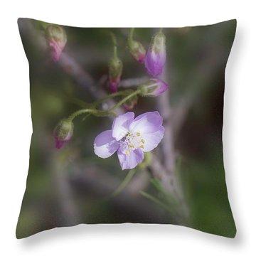 Throw Pillow featuring the photograph Sundew by Elaine Teague