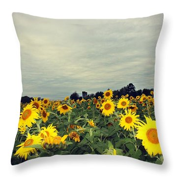 Throw Pillow featuring the photograph Sunflower Fields by Candice Trimble