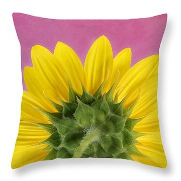 Throw Pillow featuring the photograph Sunflower On Pink - Botanical Art By Debi Dalio by Debi Dalio