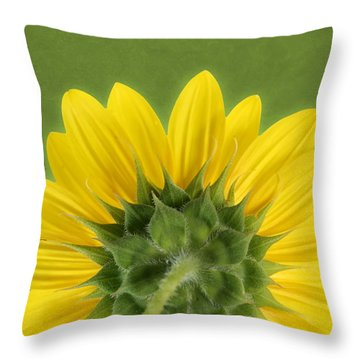 Throw Pillow featuring the photograph Sunflower Sunrise - Botanical Art by Debi Dalio