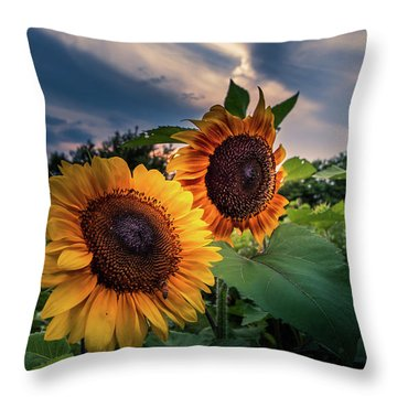 Sunflowers In Evening Throw Pillow