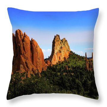 Throw Pillow featuring the photograph Sunlight On The Garden by Jon Burch Photography