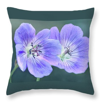 Throw Pillow featuring the photograph Sunny Blooms by Leda Robertson