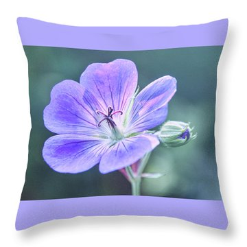 Throw Pillow featuring the photograph Sunny Blossom by Leda Robertson