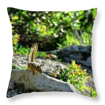 Sunny Chipmunk Throw Pillow