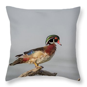 Sunny Day Wood Duck Throw Pillow