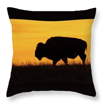 Sunrise Bison Throw Pillow